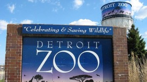 Detroit-Zoo---25851330