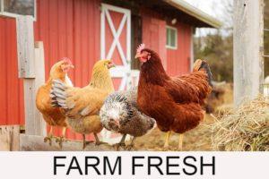 Local Farm Fresh Resources Button
