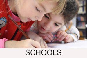 Rochester Hills Area Schools Button